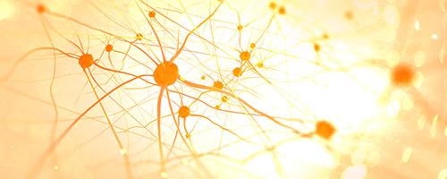 In der Neurologie